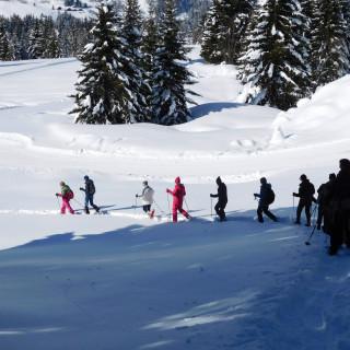 raquettistes se promenant dans la neige